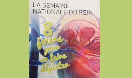 Annulation : Journée de dépistage des maladies rénales